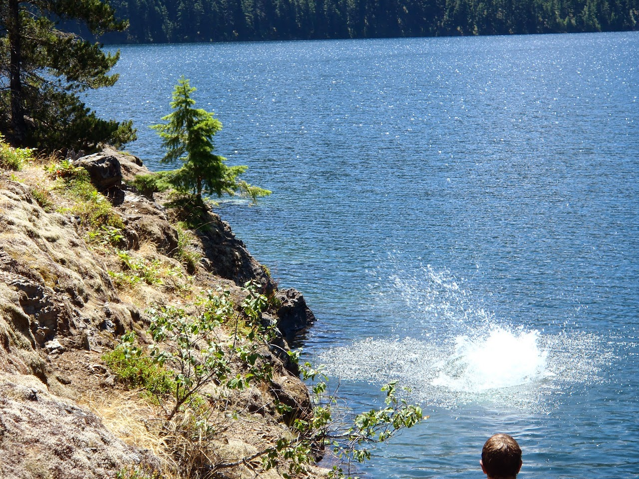 Ross Lake July 2014 - P7080082.JPG