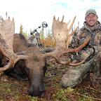 15-Moose.jpg