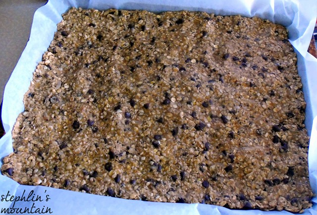 Easy, No-Bake Energy Bars Pressed In Pan