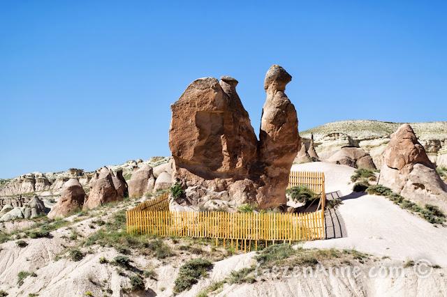 Kapadokya'daki Aktepe bölgesindeki deve şeklindeki peribacası