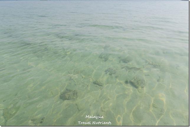 沙巴亞庇馬穆迪島 (17)