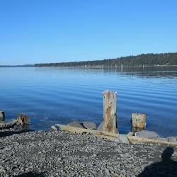 Woodard Bay Conservation Area's profile photo