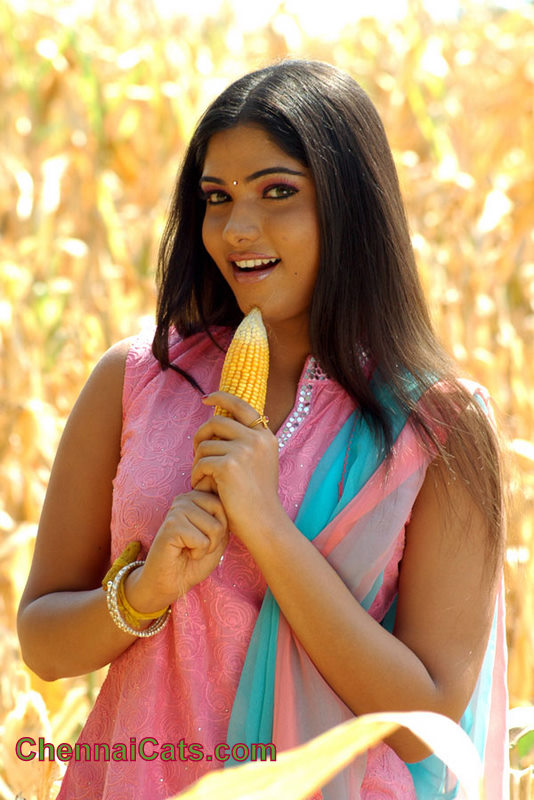 Sarima India  city photos gallery : Bhanu Hot Tamil Actress Hot Videos