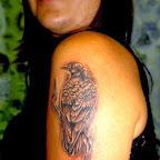 arm - Bird Tattoos