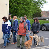 17. Mai 2016: On Tour in Pechbrunn - DSC_0275.JPG