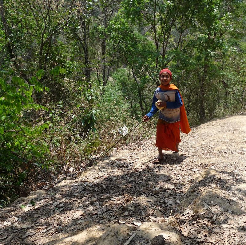 Chine: randonnée xishangbanna, région de Bada - Picture1%2B1020.jpg
