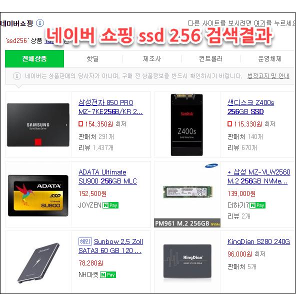 네이버 쇼핑 ssd256 검색결과