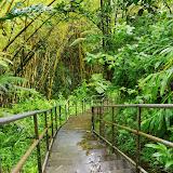 06-23-13 Big Island Waterfalls, Travel to Kauai - IMGP8833.JPG
