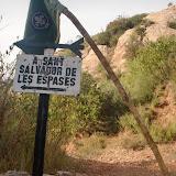 Raiers Sortida Sant Salvador de les Espases 2010 - CIMG0396.JPG