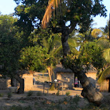 Typical Mozambiquan houses