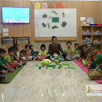 Green Day Celebration of Nursery Morning Section at Witty World, Chikoowadi (2017-18)