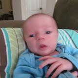 Meet Marshall! - IMG_0368.JPG