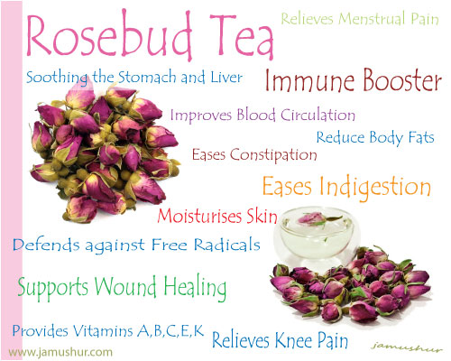 Benefit Of Drinking Rose Bud Tea