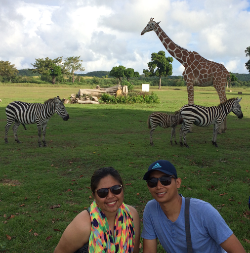 Photo Op with Giraffes and Zebras