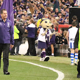 Fremantle v North Melbourne Round 8 2015