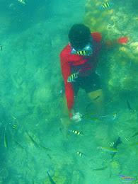 family trip pulau harapan, 1-2 agustus 2015 gopro 15