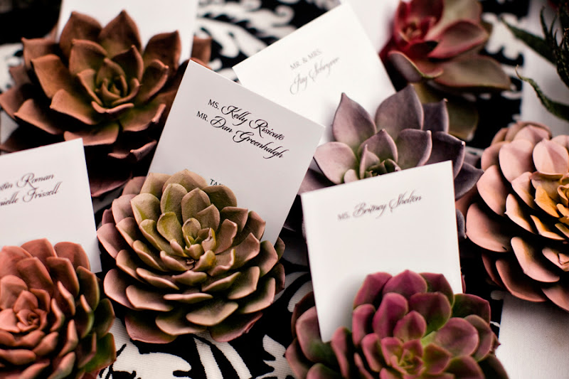 succulent place cards-beautiful wedding details