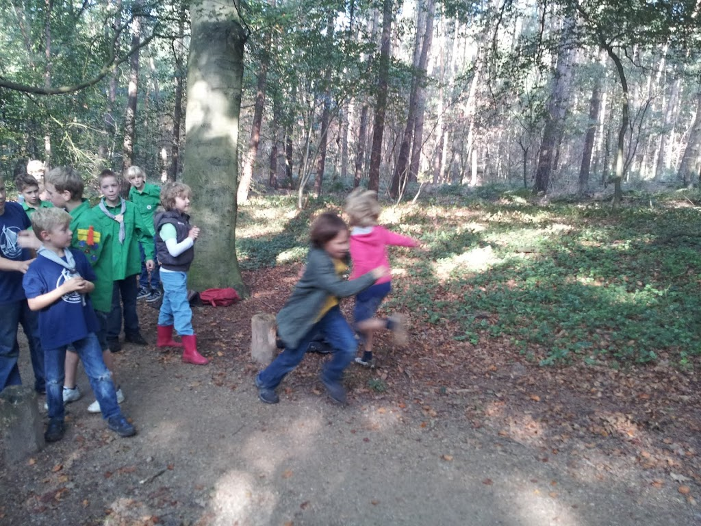 Welpen - Staartentikkertje in bos - 20111001_112406.jpg