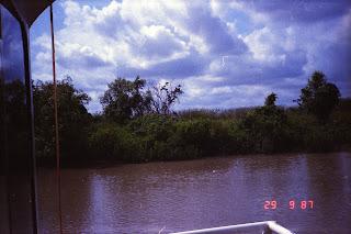6060Adelaide River Croc Tour