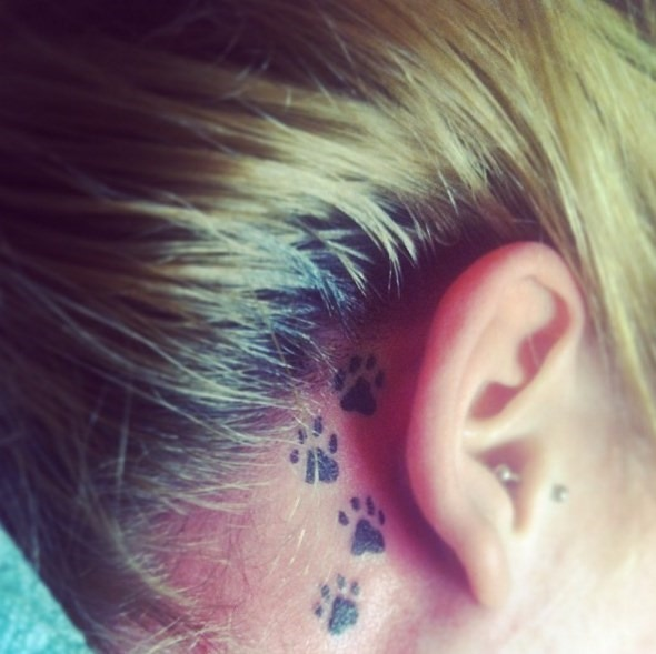 Orelha Tatuagens Veja O Que Fez O Nosso Tatuagem