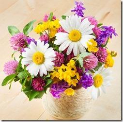 margaritas flores (5)