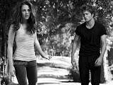 MOVIES:The Twilight Saga