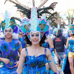 CarnavaldeNavalmoral2015_309.jpg