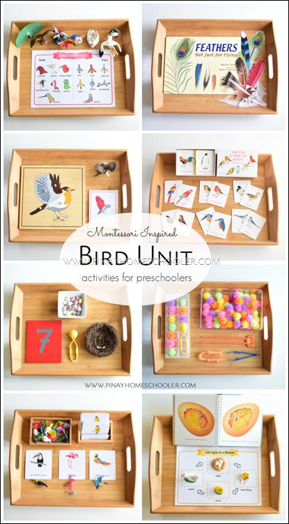 BirdUnitMontessoriPIN
