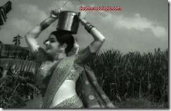 Kanchana Hot 83