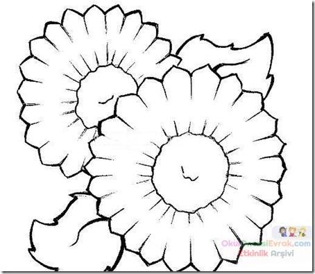 flore sencillas para colorear  (14)