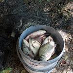 20140805_Fishing_Bochanytsia_030.jpg