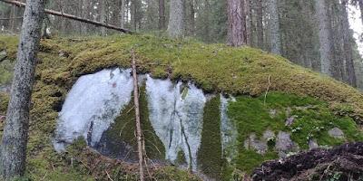 Niivermäen luontopolku