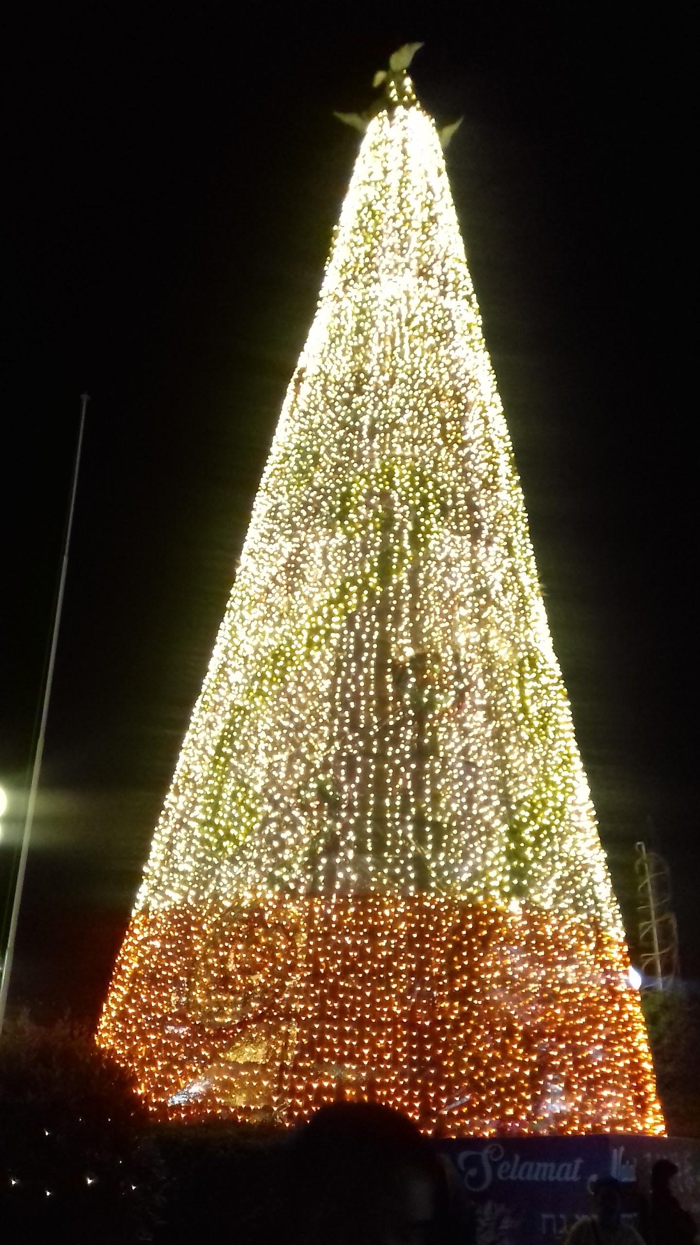 Pohon Natal Yang Berlokasi Di Depan Kantor Walikota Manado Tepatnya Dilapangan Tikala