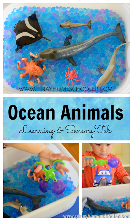 Ocean Learning Tub