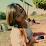 Sheryl Gibo's profile photo
