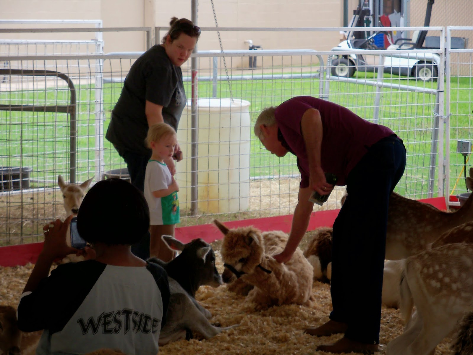 Fort Bend County Fair 2014 - 116_4295.JPG