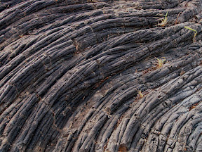 Ropes of lava, East Rift Zone 1