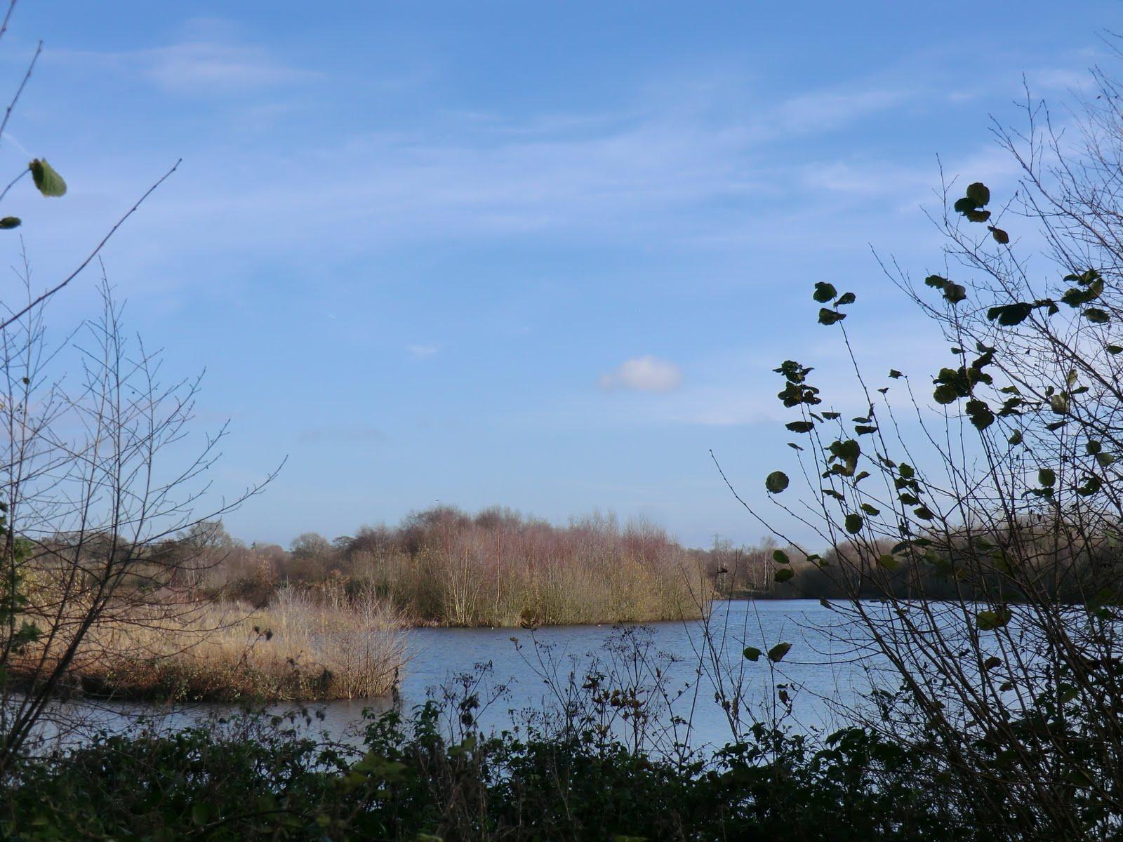 CIMG6339 Moor Green Lakes in winter