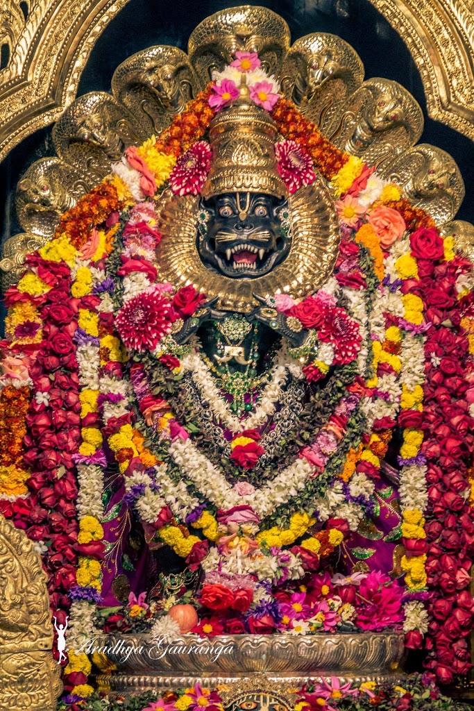 ISKCON Mayapur Deity Darshan 20 Jan 2017 (28)