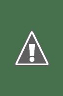 Bathroom 300 square skylight.jpg