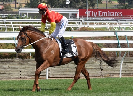 newmarket_extreme choice 3