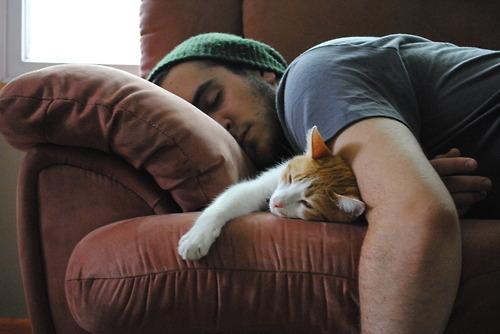kucing tidur dengan orang