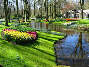 Photo: Parc floral du Keukenhof en Hollande.