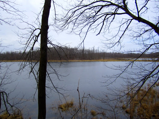 Twin lakes free of ice. Bullhead and Island also free of ice. Little Sugarbush remains 95%  covered