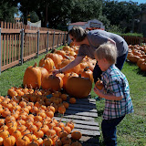 Pumpkin Patch 2015 - 100_0408.JPG