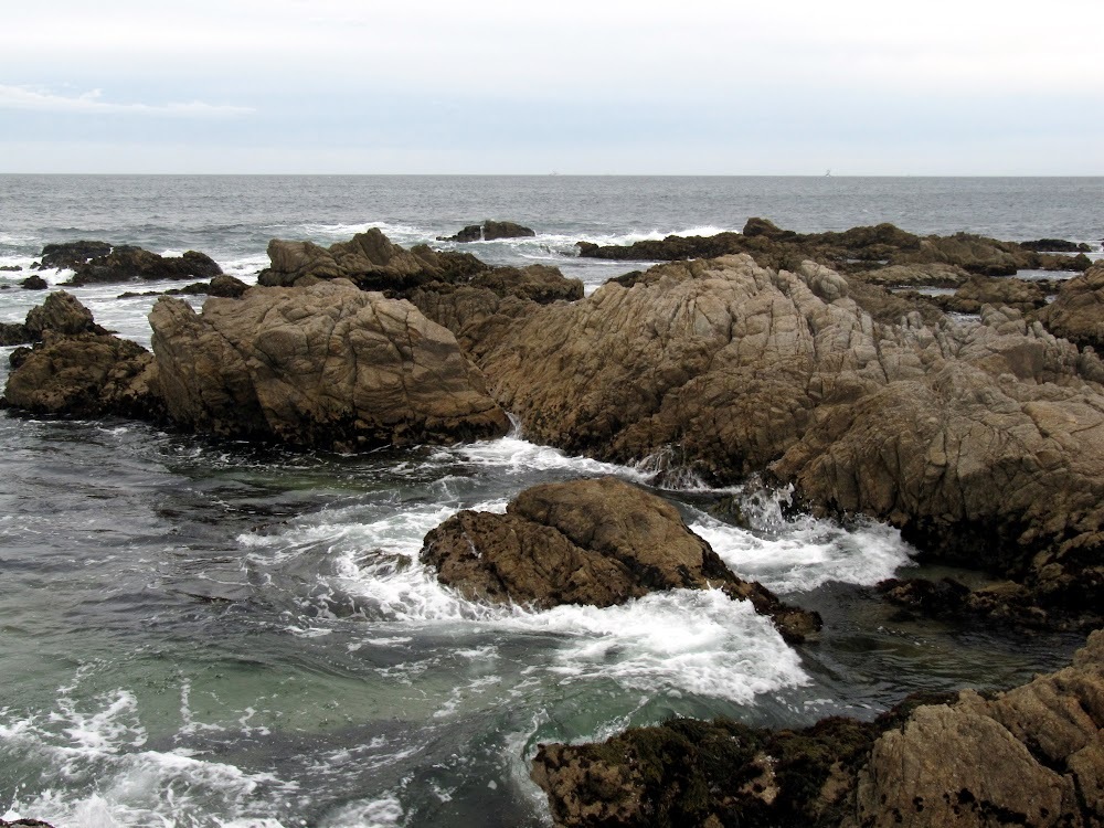 A rocky section of the California coast