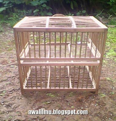 Foto Sangkar Burung Merpati Balap