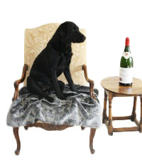 Home Accessories For Dog Lovers, Personalised Dog Cushions, Dog Blankets and Throws, Doggy Doorstops