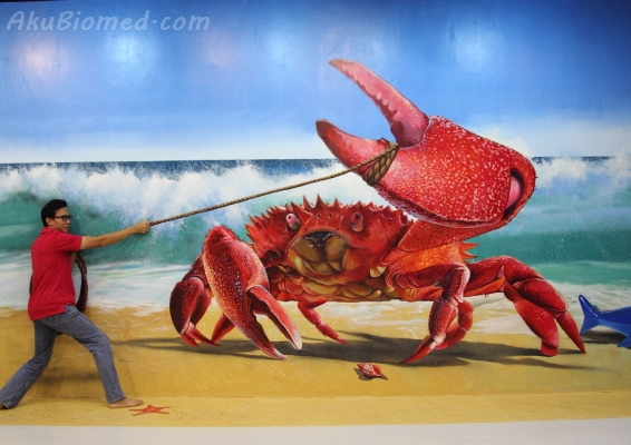 menangkap ketam di Magic Art Museum