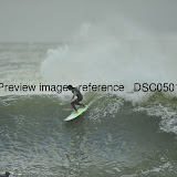 _DSC0501.jpg